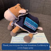 Lochberry and the Team at LLEP Raise a Whopping £820 for Charity
