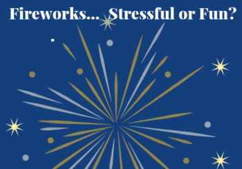 Have your Say - A Consultation on Fireworks in Scotland