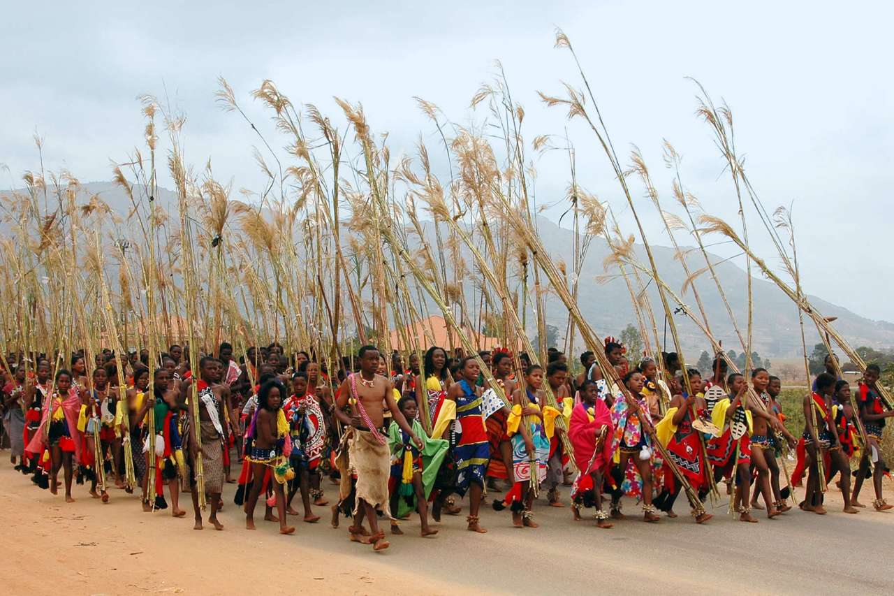 Tribes at The Reed dance in Swaziland