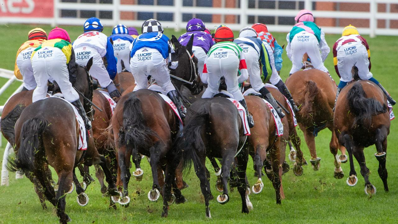 Melbourne Cup jockeys and horse on track