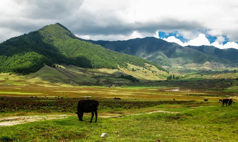 West Bhutan landscape