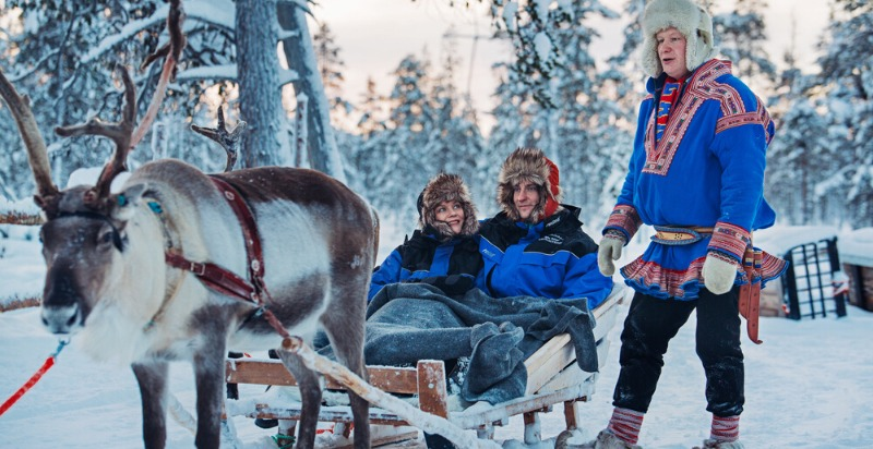 reindeer and sled in santa's lapland