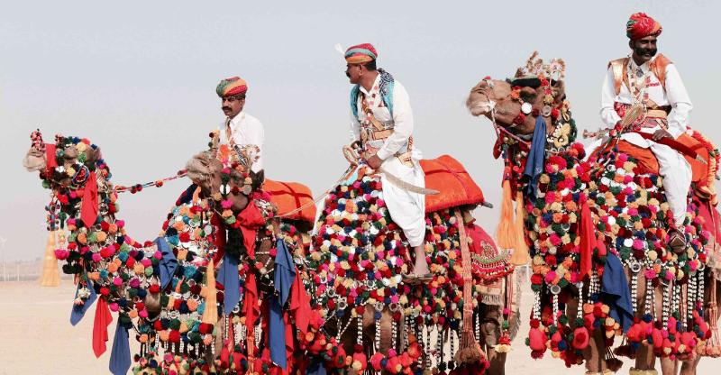 3 decorated camels and riders at Pushkar Camel Fair