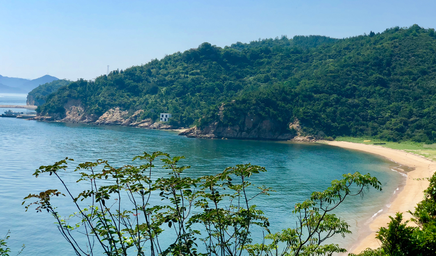 beach and forest on Shikoku art and culture tour