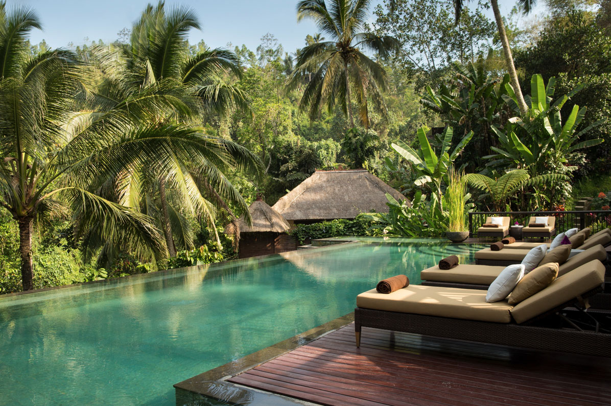 palm trees, pool and loungers at hanging gardens of bali