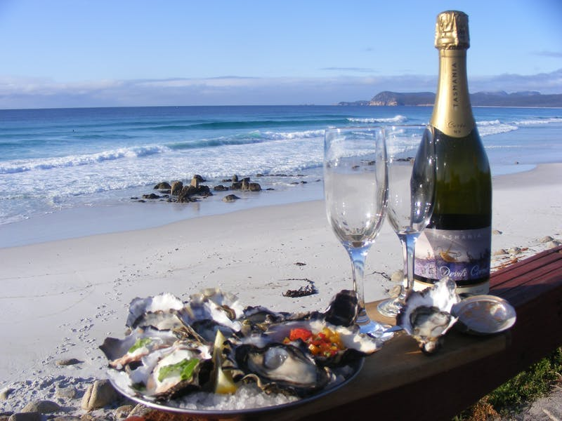 champagne and oysters with ocean view