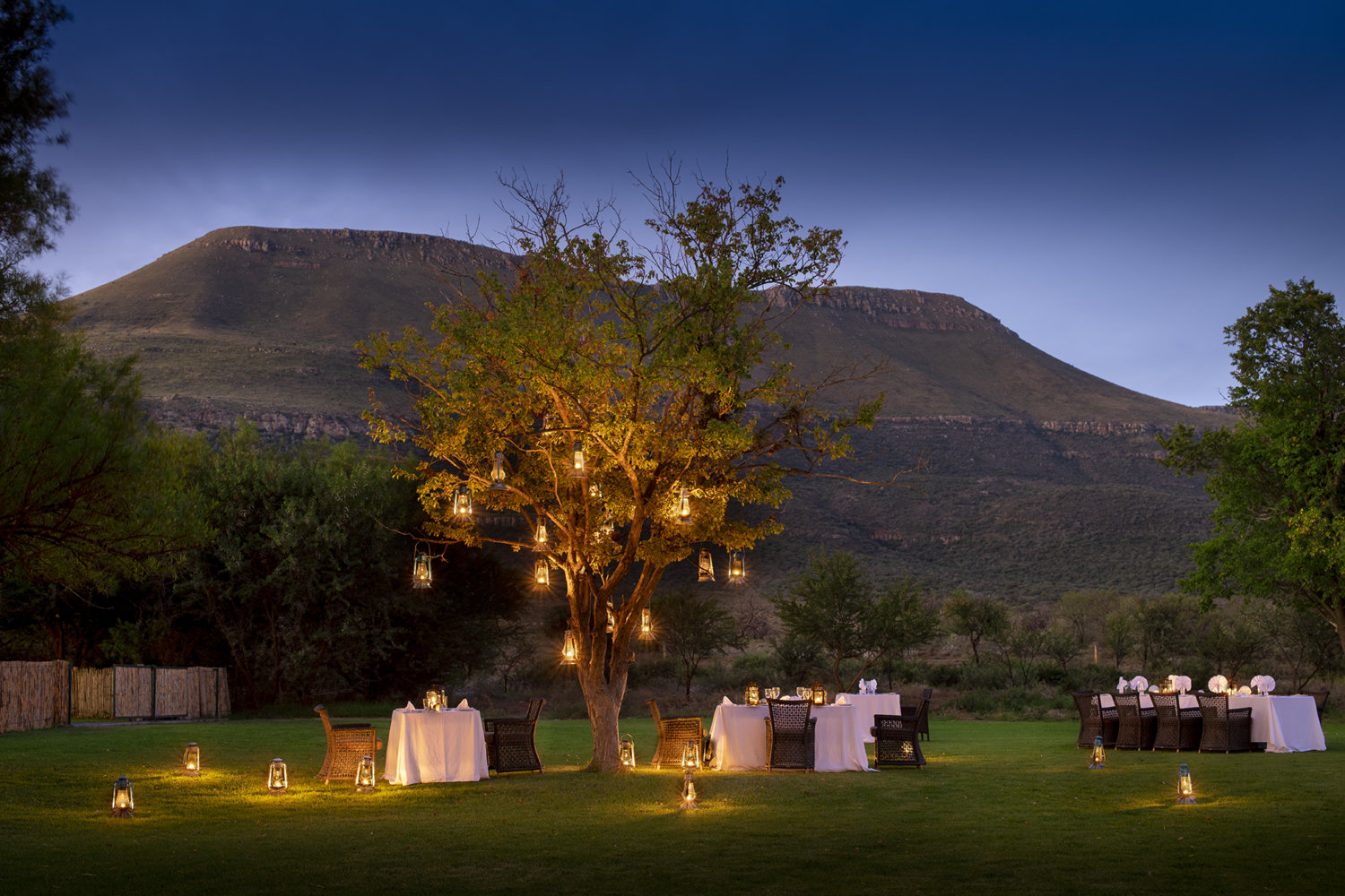 dinner tables at sunset under trees at Samara private reserve