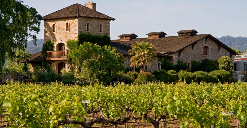 vineyard with cottages in background