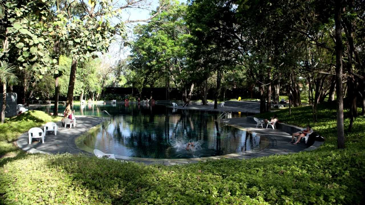 Osho Meditation Retreat Swimming Pool surrounded by trees and vegtation