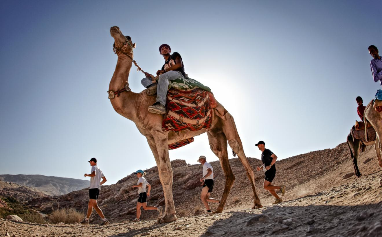 camel in foreground as Petra Desert Marathon runners race past