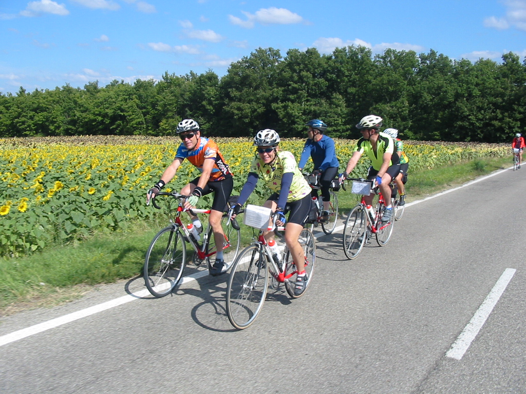 group of cyclists on beer and bike belgium tour