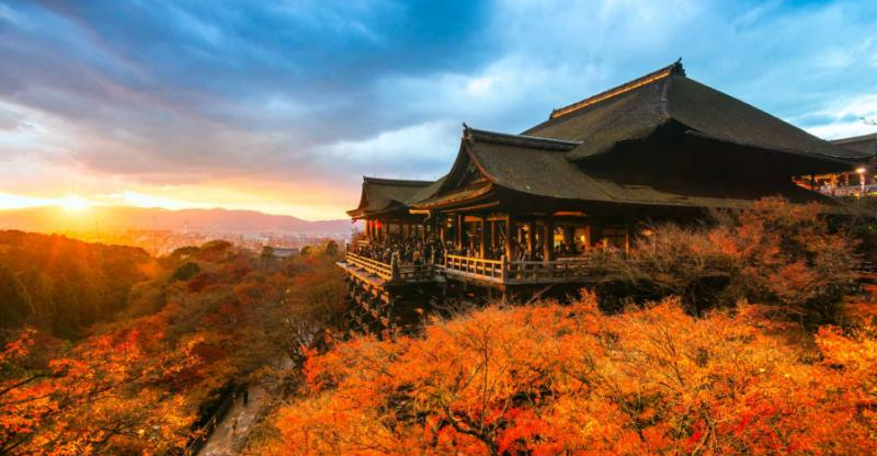 autumn colours and building on spirits of japan tour
