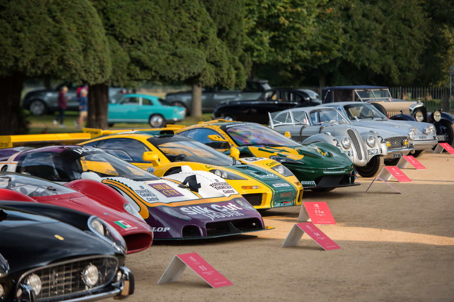 sports cars lined up at concours of elegance
