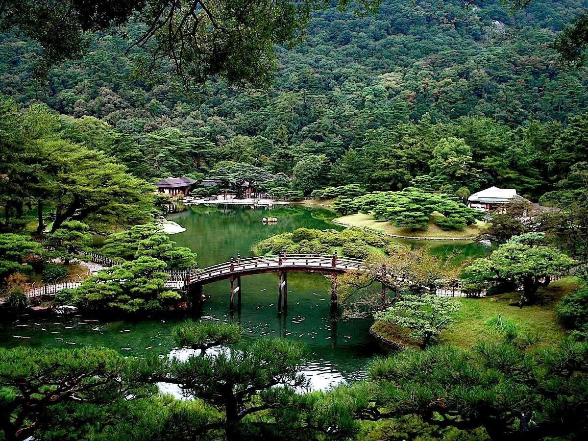 bridge in forest in Shikoku