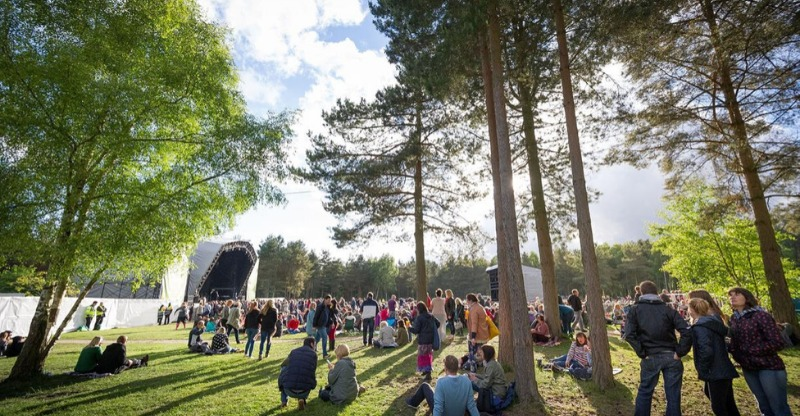 Stunning sunshne through the trees at Forest Live - Sherwood Pines