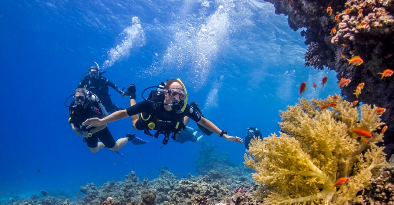 Scuba diving in the crystal clear water off Dahab Yoga Diving