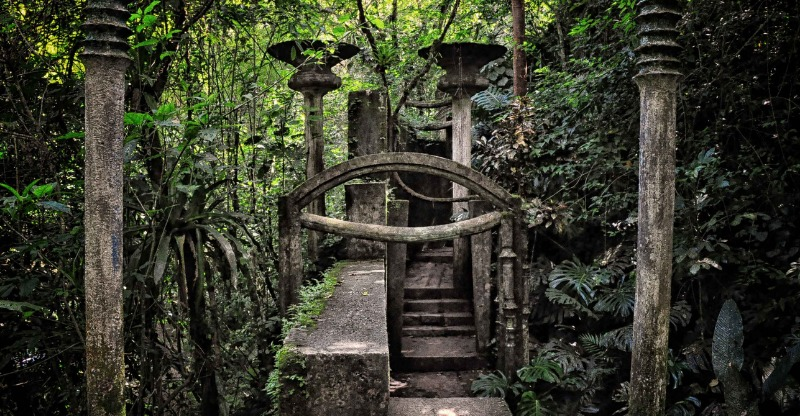 Surreal sculptures in the midst of the forest at the Las Pozas Rainforest Gardens