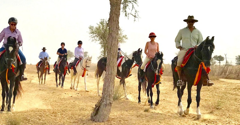Group travelling through the desert with Relief Riding Expeditions