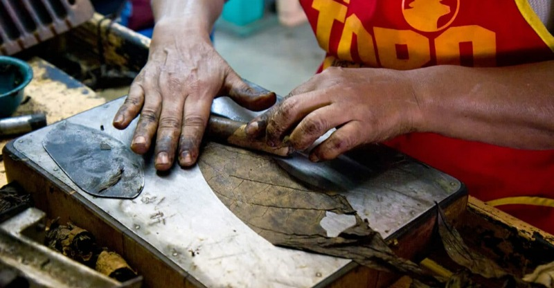 Hand rolling cigars in Nicaragua