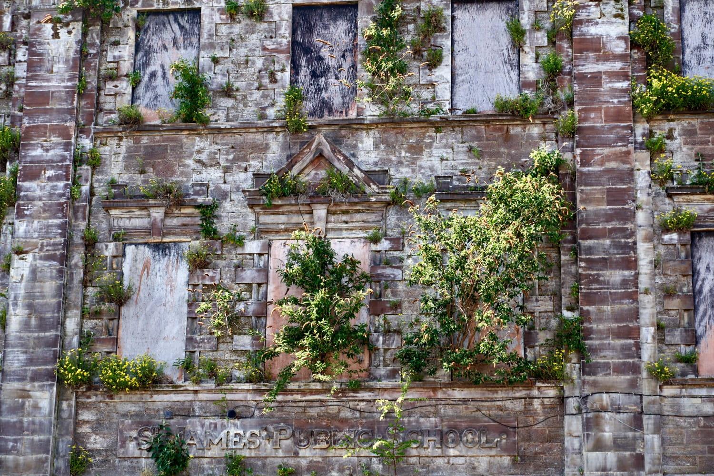 Rotting facade. toshiepix