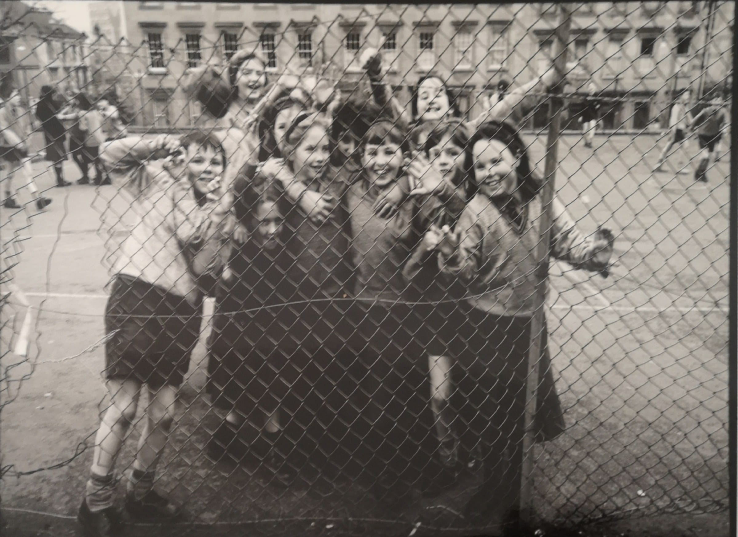 The kids who play on the hill (St Aloysius' College Primary pupils (Jasenko Rasol))