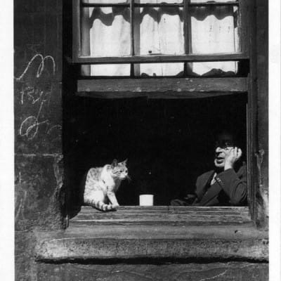 Your move, Felix... (Gorbals cat, 1948 (Bill Brandt))