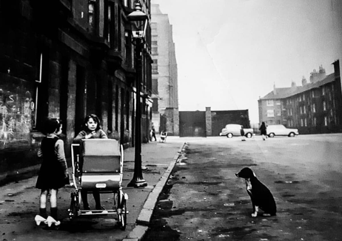Paws for thought (Gorbals kids with pram and dog, 1963 (Oscar Marzaroli))