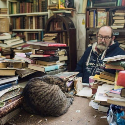 Purr-using in the bookshop