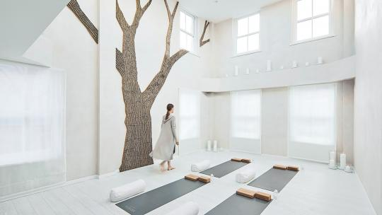 <h1>Bamford Haybarn, Brompton Cross: is this the chicest yoga studio in London?</h1>