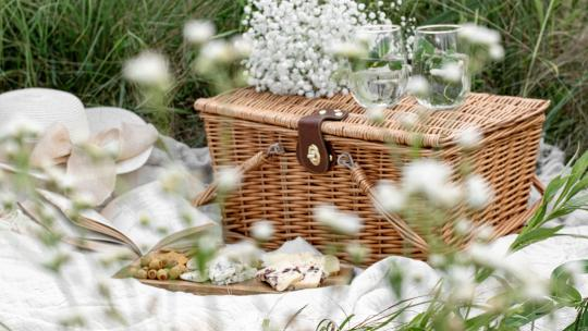 best picnic baskets and hampers