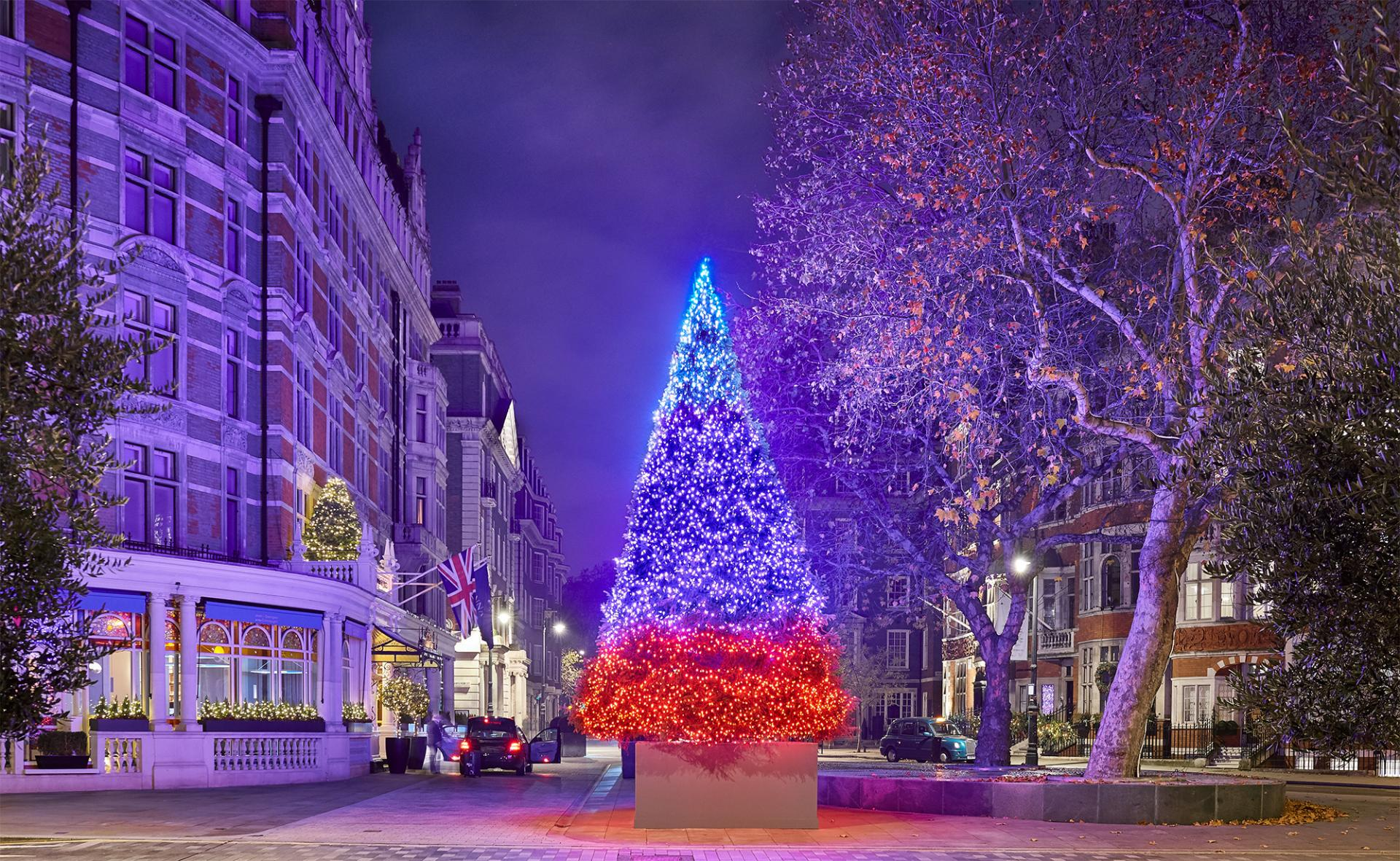The Best Christmas Trees In London 2018