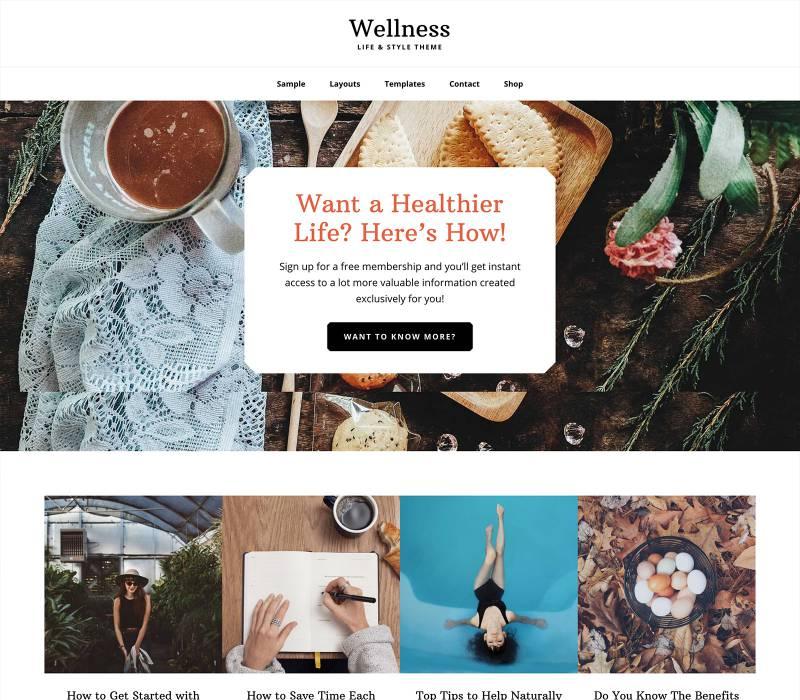 wellness pro+theme