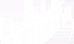 Maximize Logo