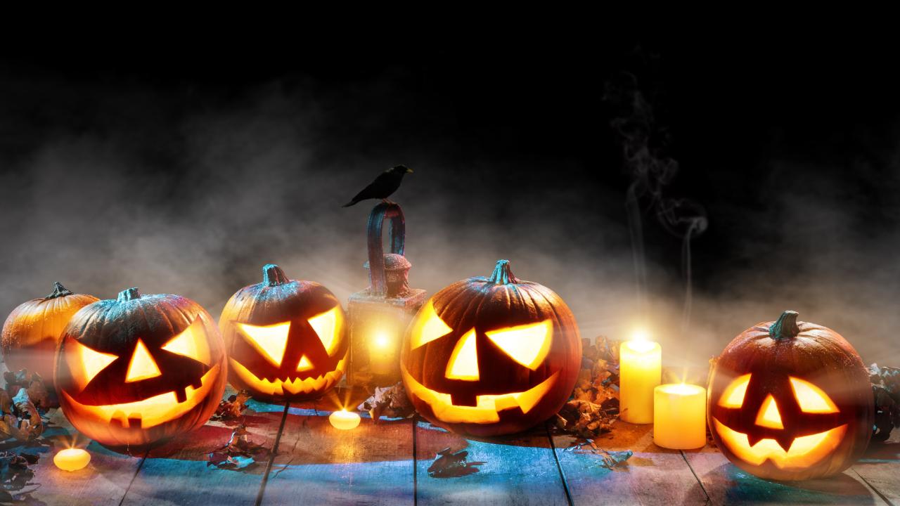 Bryngarw Pumpkin Spooktacular
