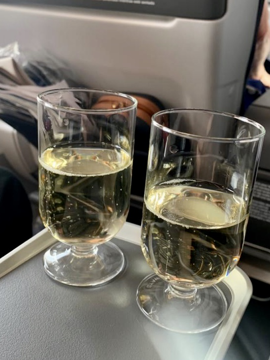 Premium Economy Sparkling Wine