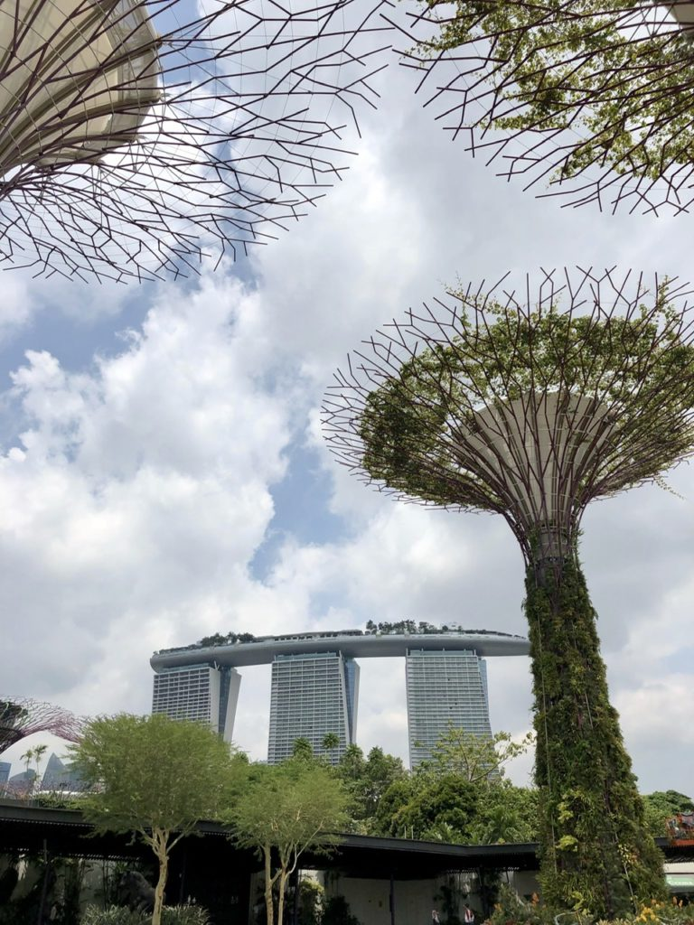Marina Bay Sands Hotel from Supertree Grove, Singapore