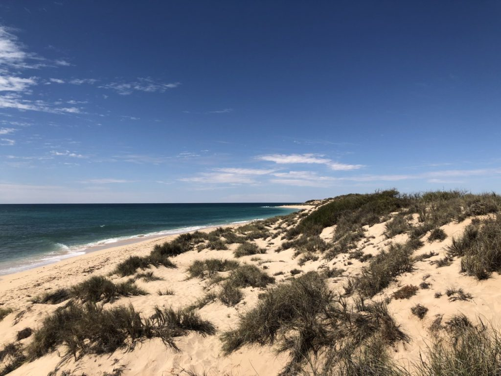 The beach and dunes along Ningaloo Reef, WA