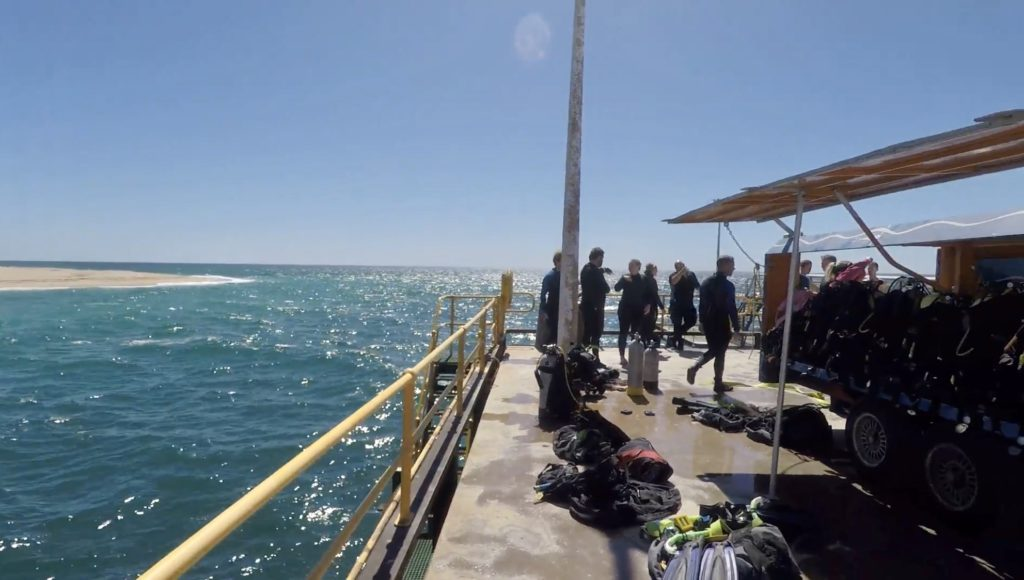 Scuba Diving from the Navy Pier, Exmouth, WA