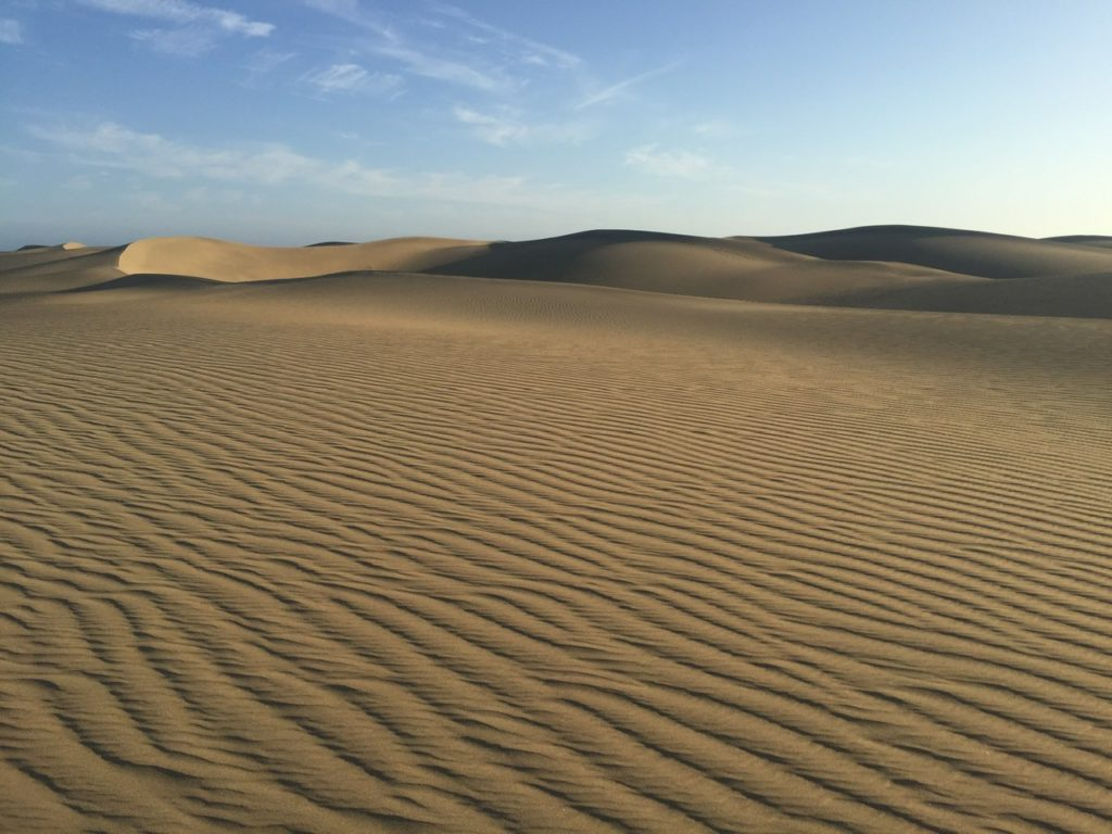 The iconic sand dunes at Maspalomas, Gran Canaria