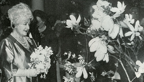 Her Majesty The Queen Mother admires the magnolias, 1962
