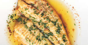 Timmermans Lambicus Blanche Sole With Orange featured image