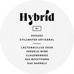 Hybrid 01