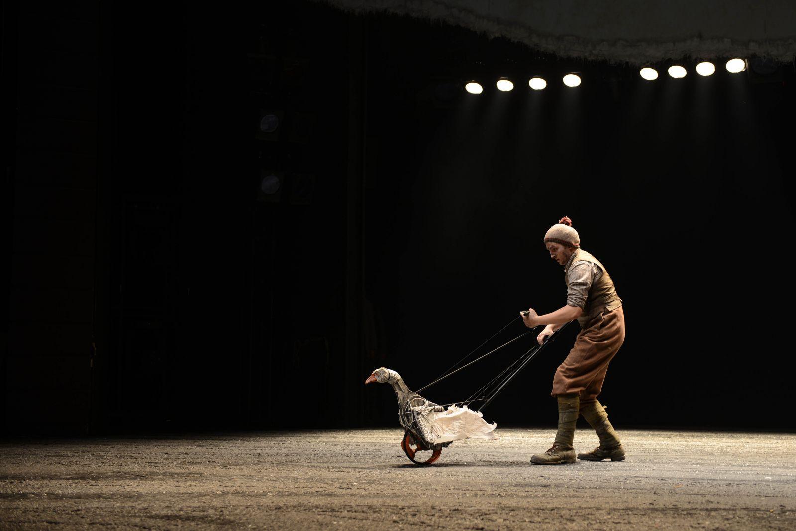WAR HORSE (National Theatre, UK & South Africa Tour)