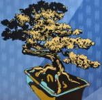 Bonsai (Growing up)