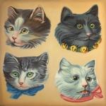 Cat Scraps