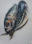 More Mackerel
