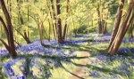 The Bluebells