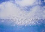Mouettes (Nuée)/ Gulls (Cloud)