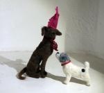 Rescue Dogs 1
