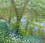 Wild Garlic, Rivers Edge